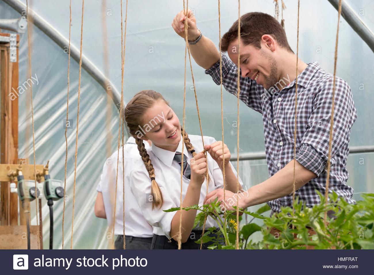 L'enseignant et l'apprentissage d'écolière de filets de jardinage plants in greenhouse Photo Stock