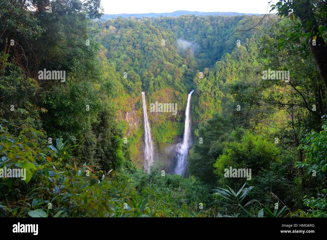 Cascade de Tad Fane, Boloven, Laos, Asie du Sud Est. Photo Stock