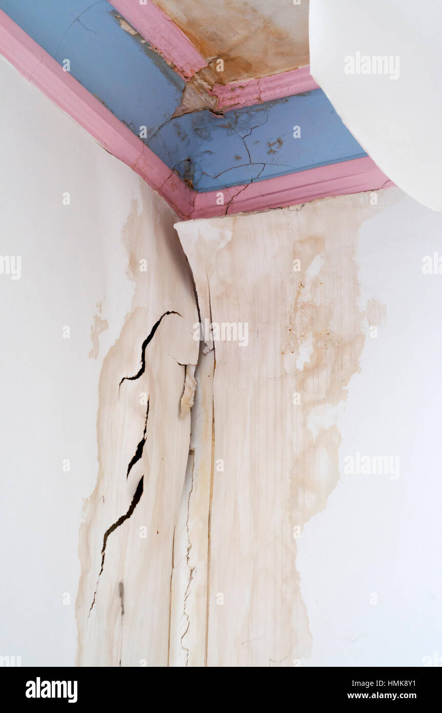 1 De 5 Dommages Causés Au Plafond Corniche En Plâtre Et Fond Par