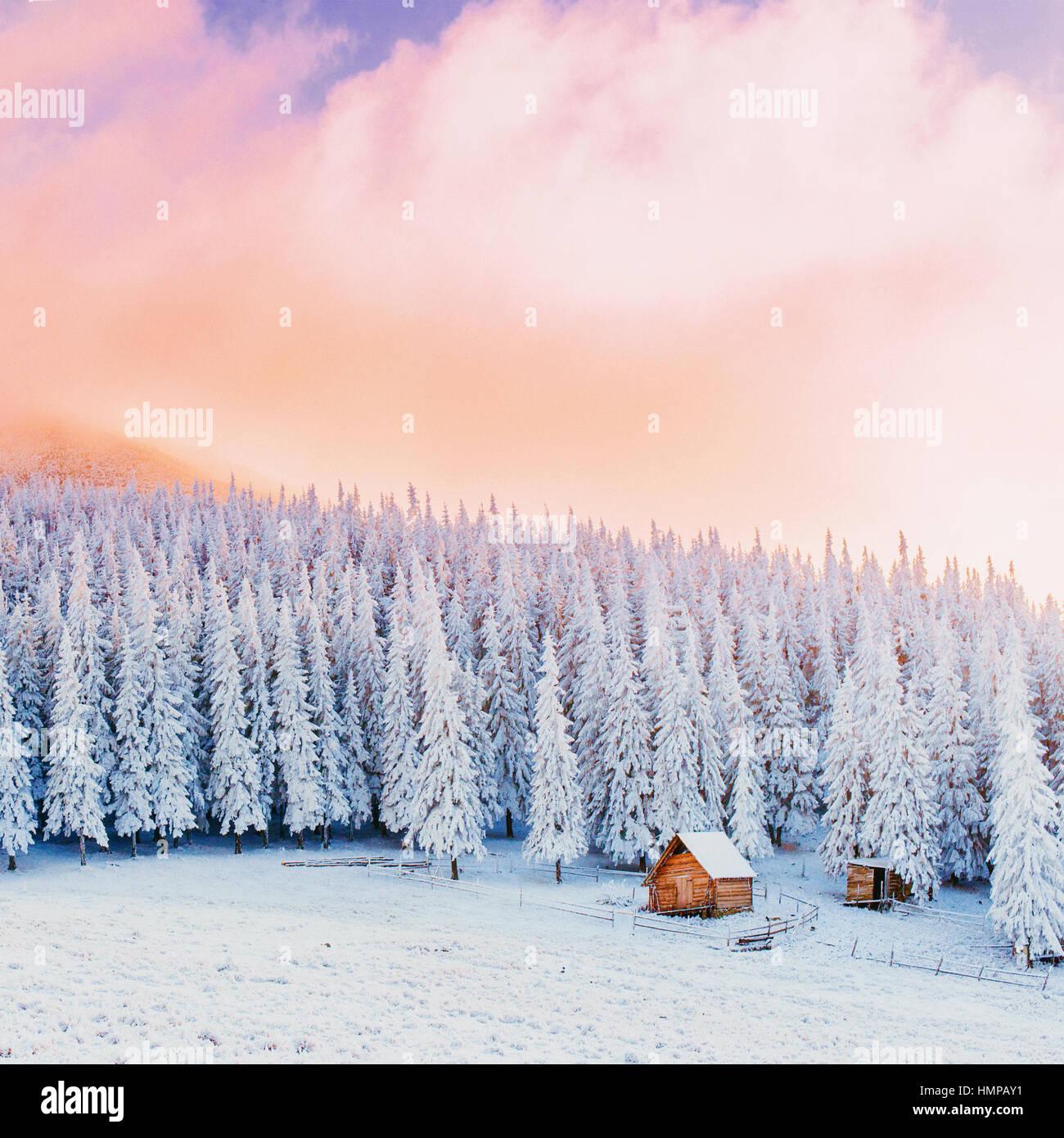 Chalet dans la montagne en hiver Photo Stock