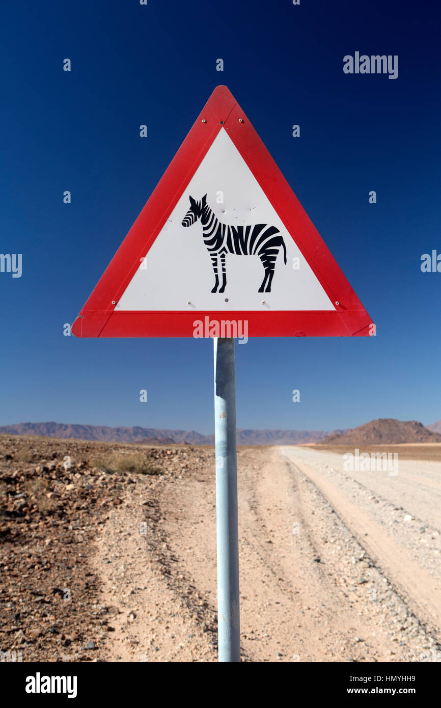 Attention dans le désert de Namibie Photo Stock
