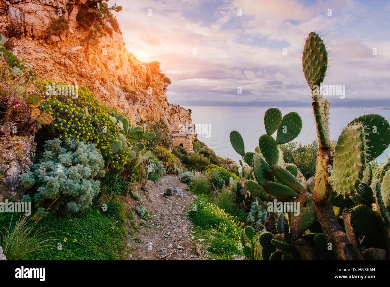 Belle vue sur les falaises Photo Stock