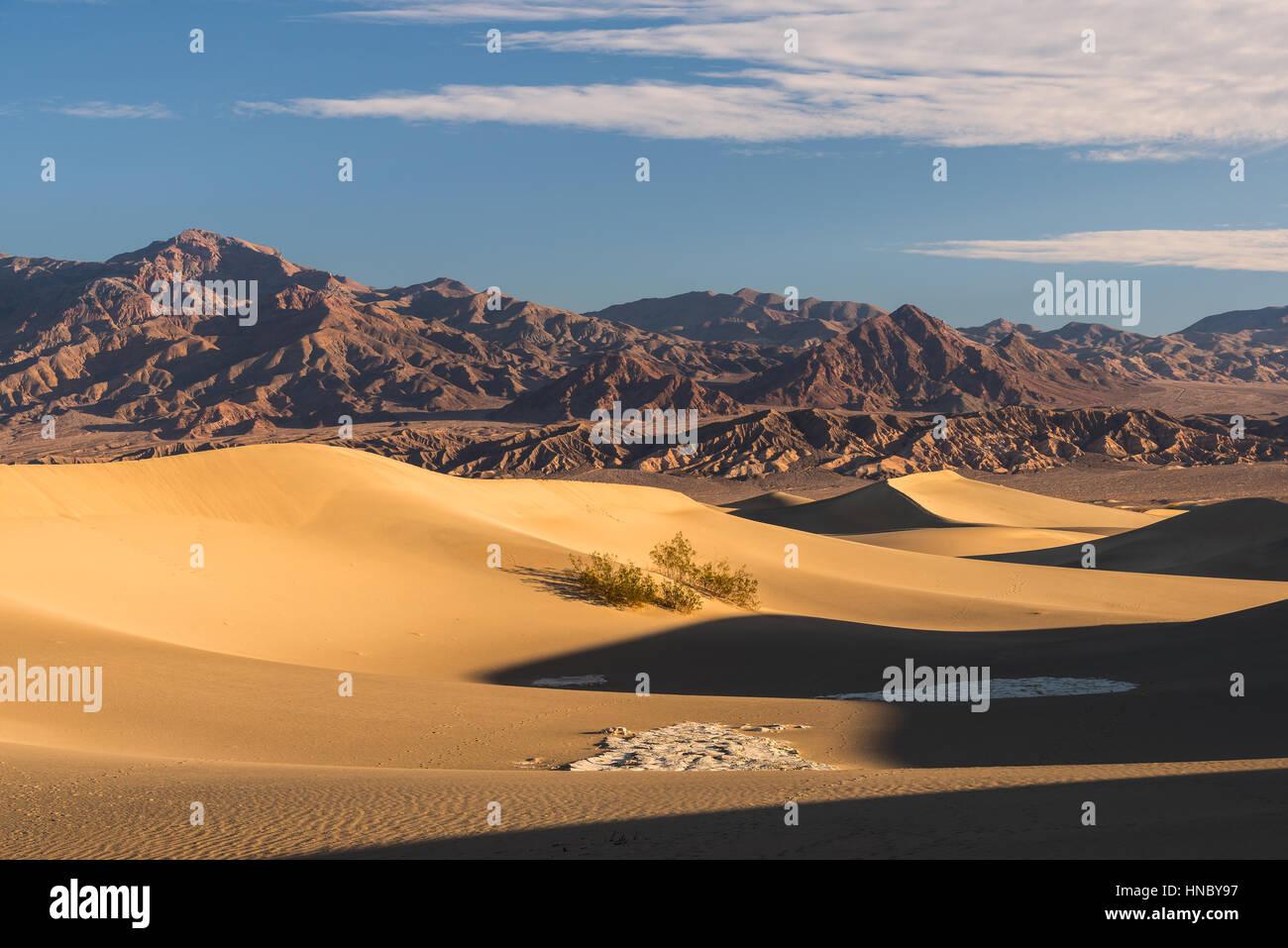 Dunes de sable de Mesquite Flats, Vallée de la mort, Californie, États-Unis Banque D'Images