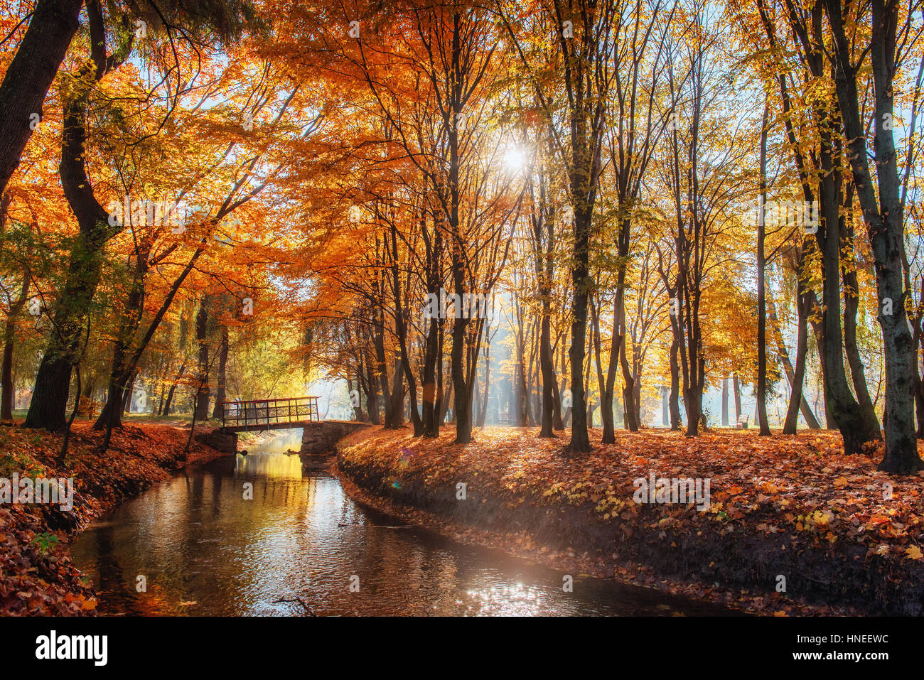 Marche pont sur la rivière avec des arbres Photo Stock