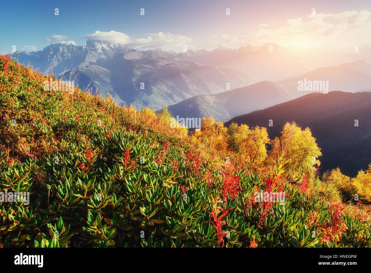 Coucher de soleil sur les sommets des montagnes. Photo Stock