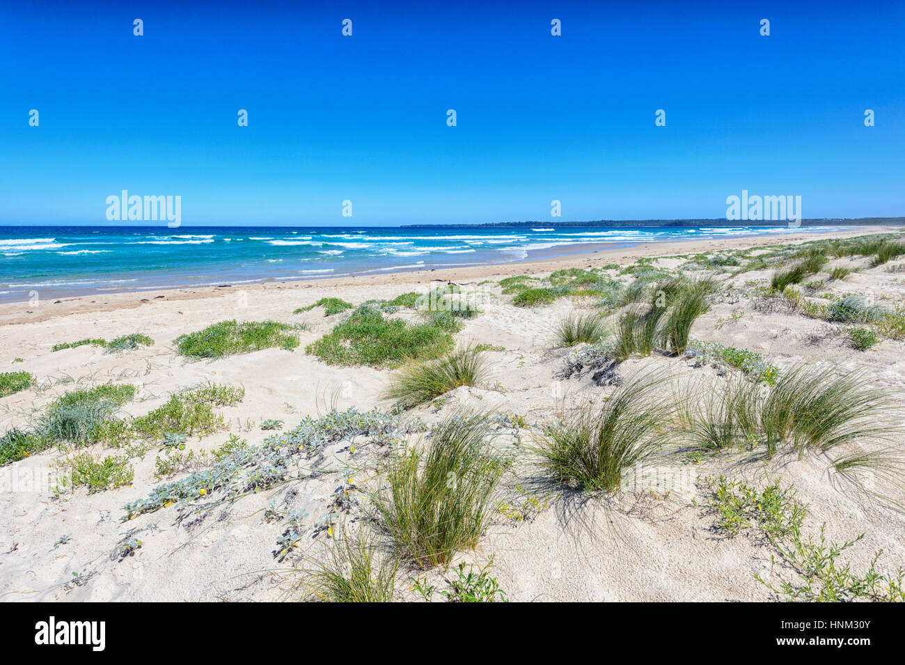 Plage de sable au lac Conjola, Shoalhaven, Côte Sud, New South Wales, NSW, Australie Photo Stock