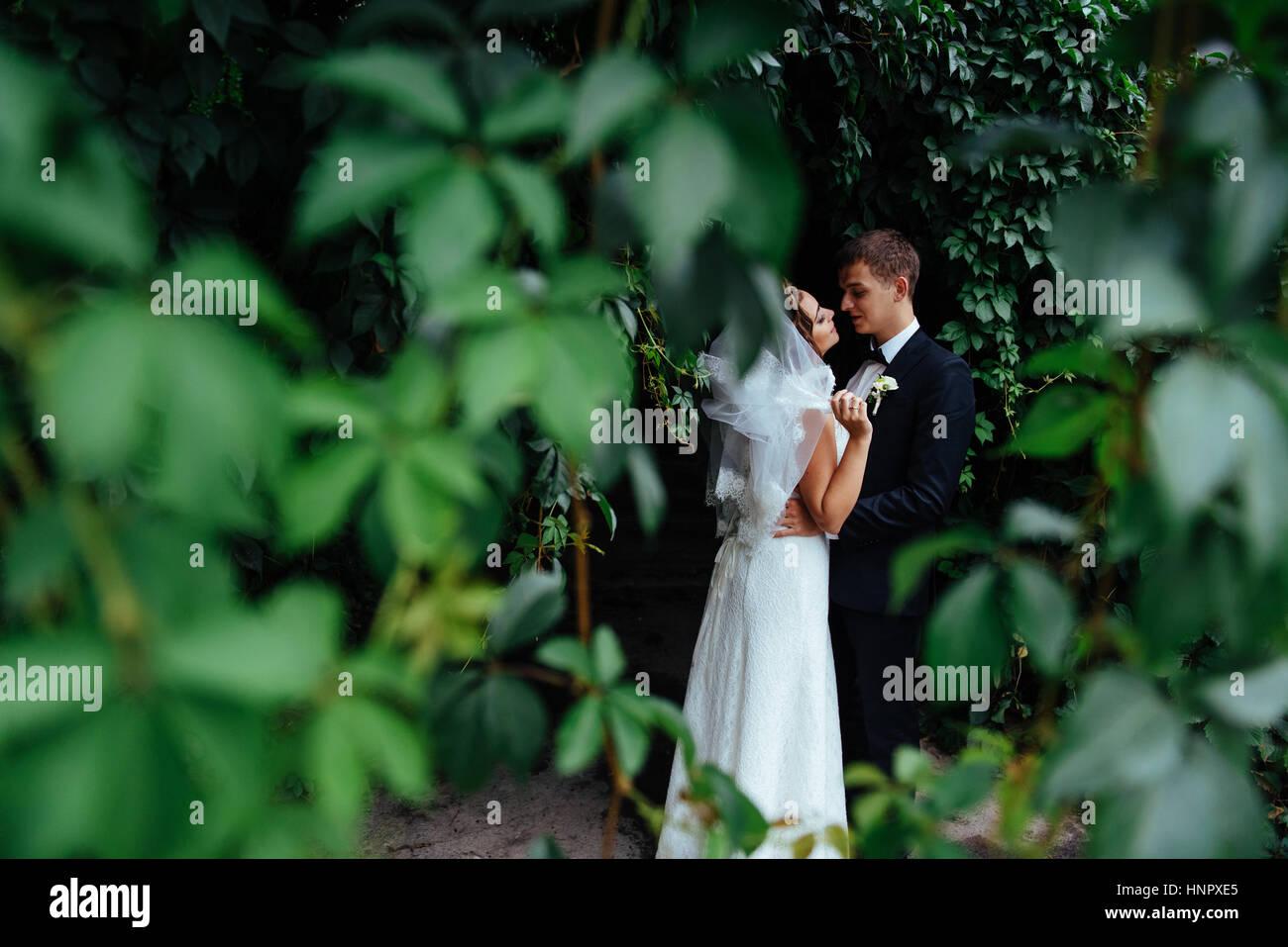 Beau jeune couple de mariage , blonde bride avec rose ... Photo Stock