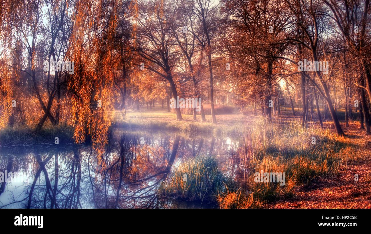 Forêt d'automne et le lac dans le coucher du soleil Photo Stock