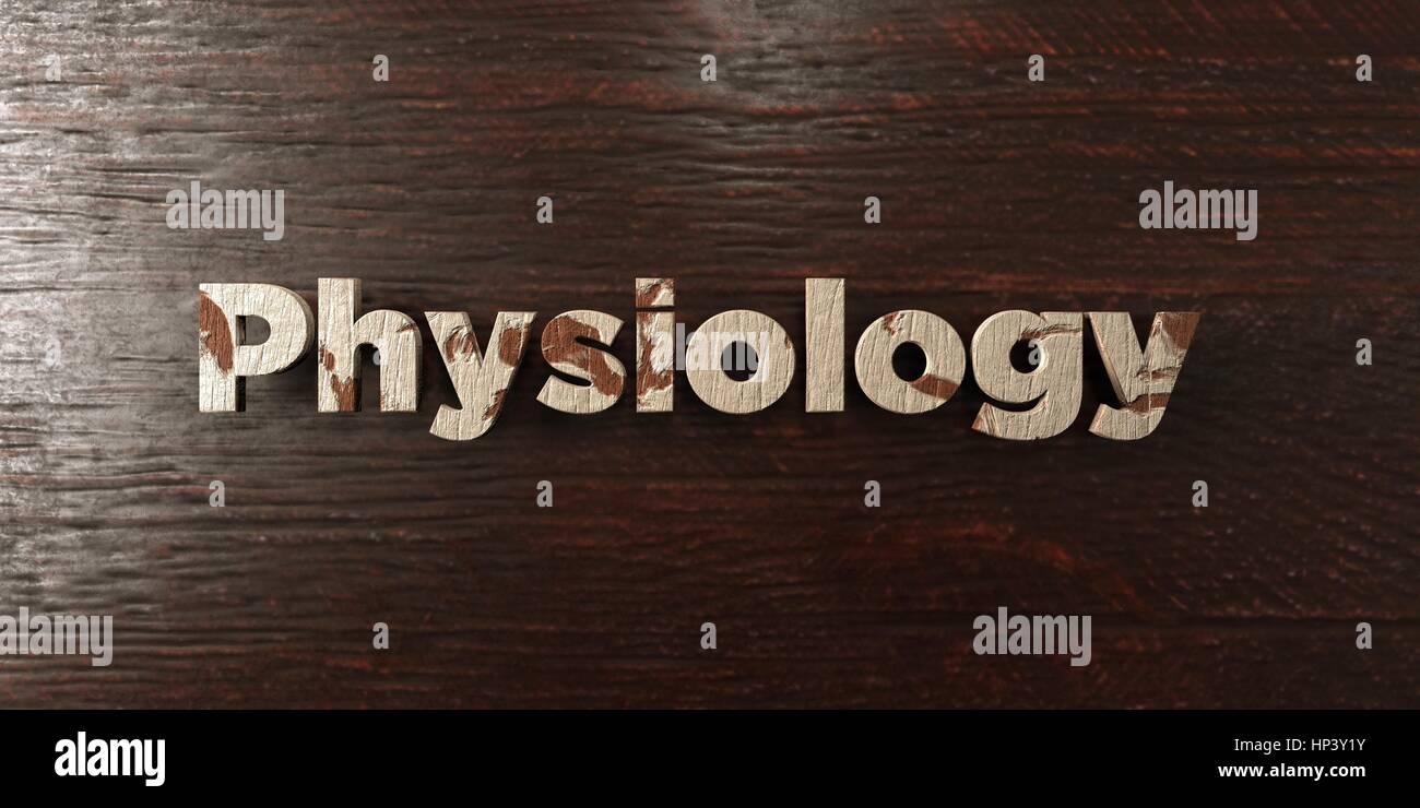 - Physiologie grungy titre en bois sur l'érable - rendu 3D d'images libres de droits. Cette image peut Photo Stock