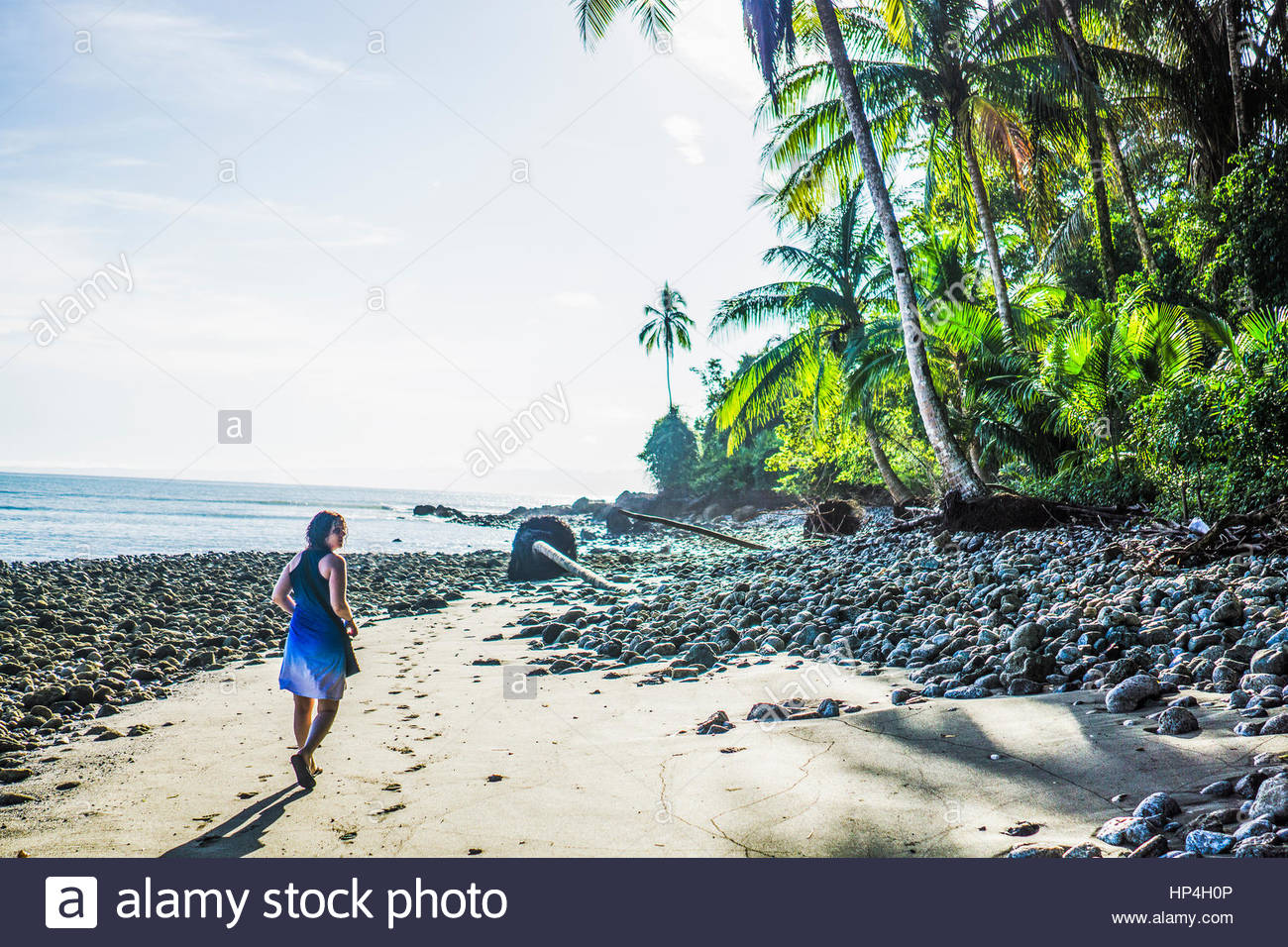 La découverte de la côte du costa rica rural, péninsule d'osa, au Costa Rica, Amérique centrale Photo Stock