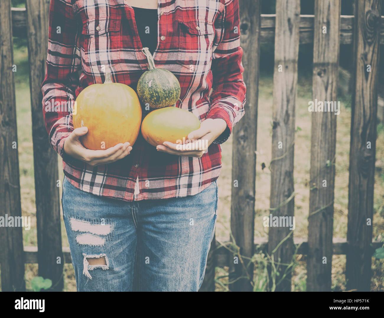 Femme avec des citrouilles à l'automne Photo Stock