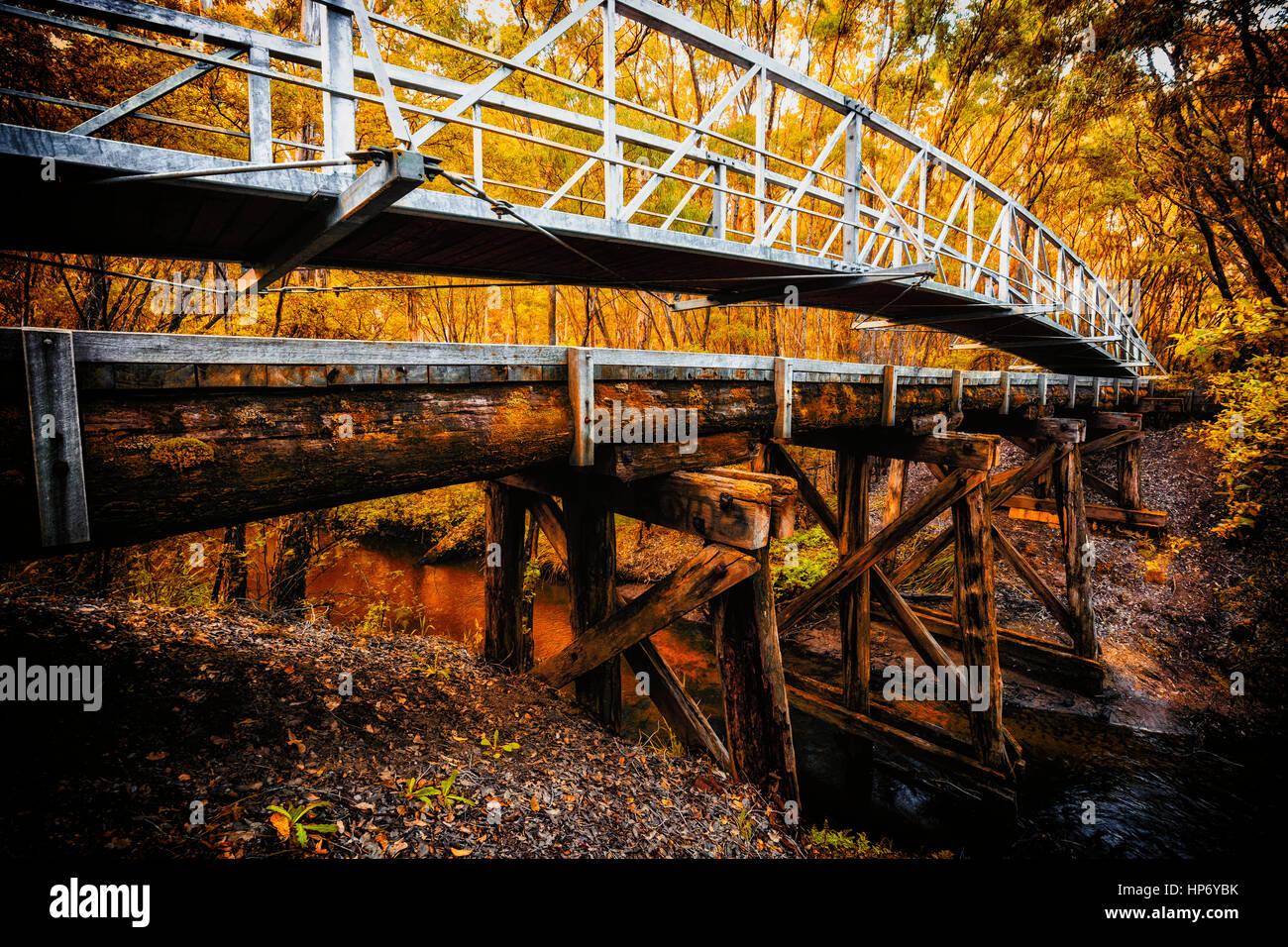 Pont de bois en automne Photo Stock