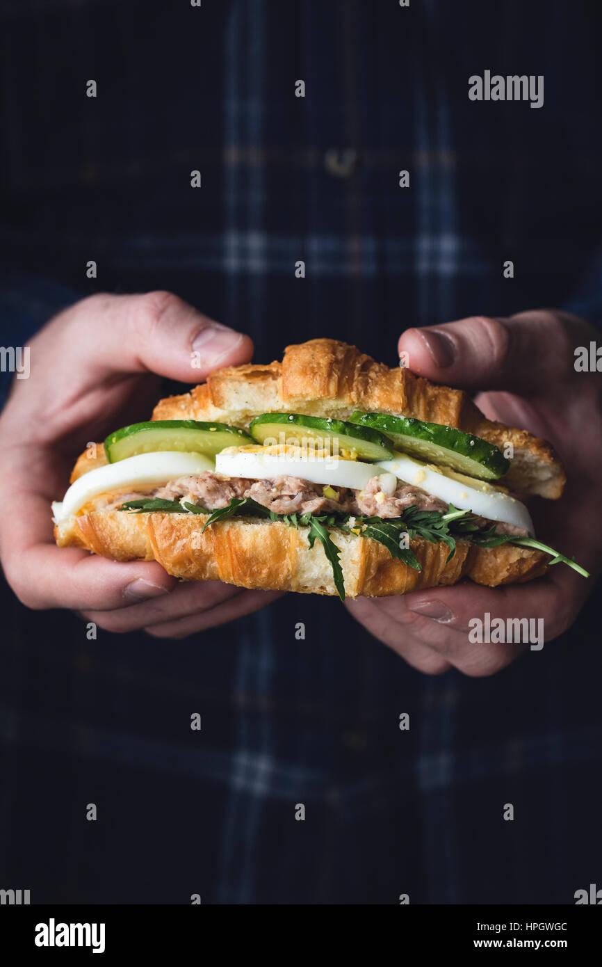 Mains tenant un croissant au thon sandwich avec la roquette, oeuf, salade de thon et de concombre. Vue rapprochée, Photo Stock