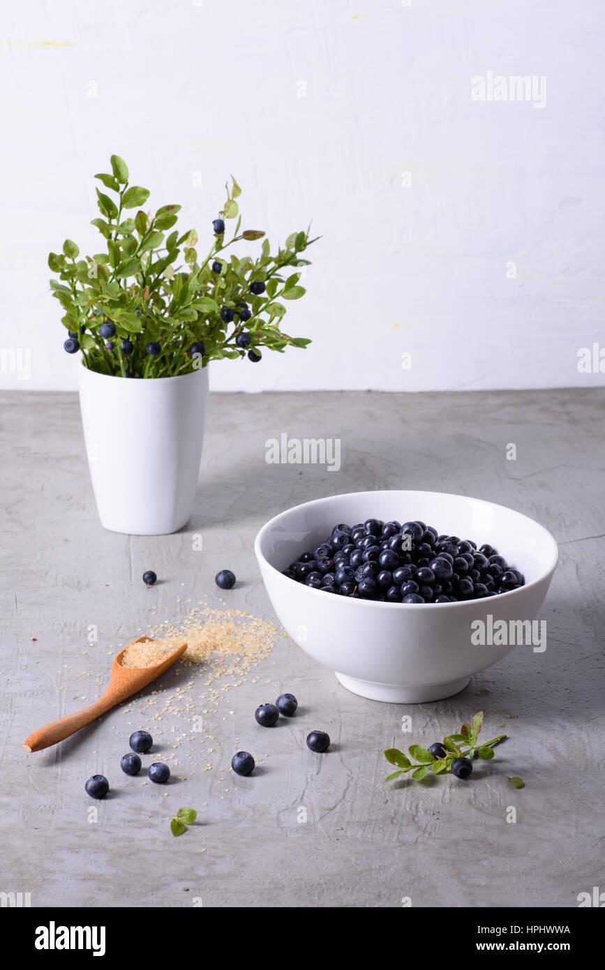 Petits fruits bleuets frais biologiques, les airelles fraiches dans un bol blanc. Dessert sain. Photo Stock