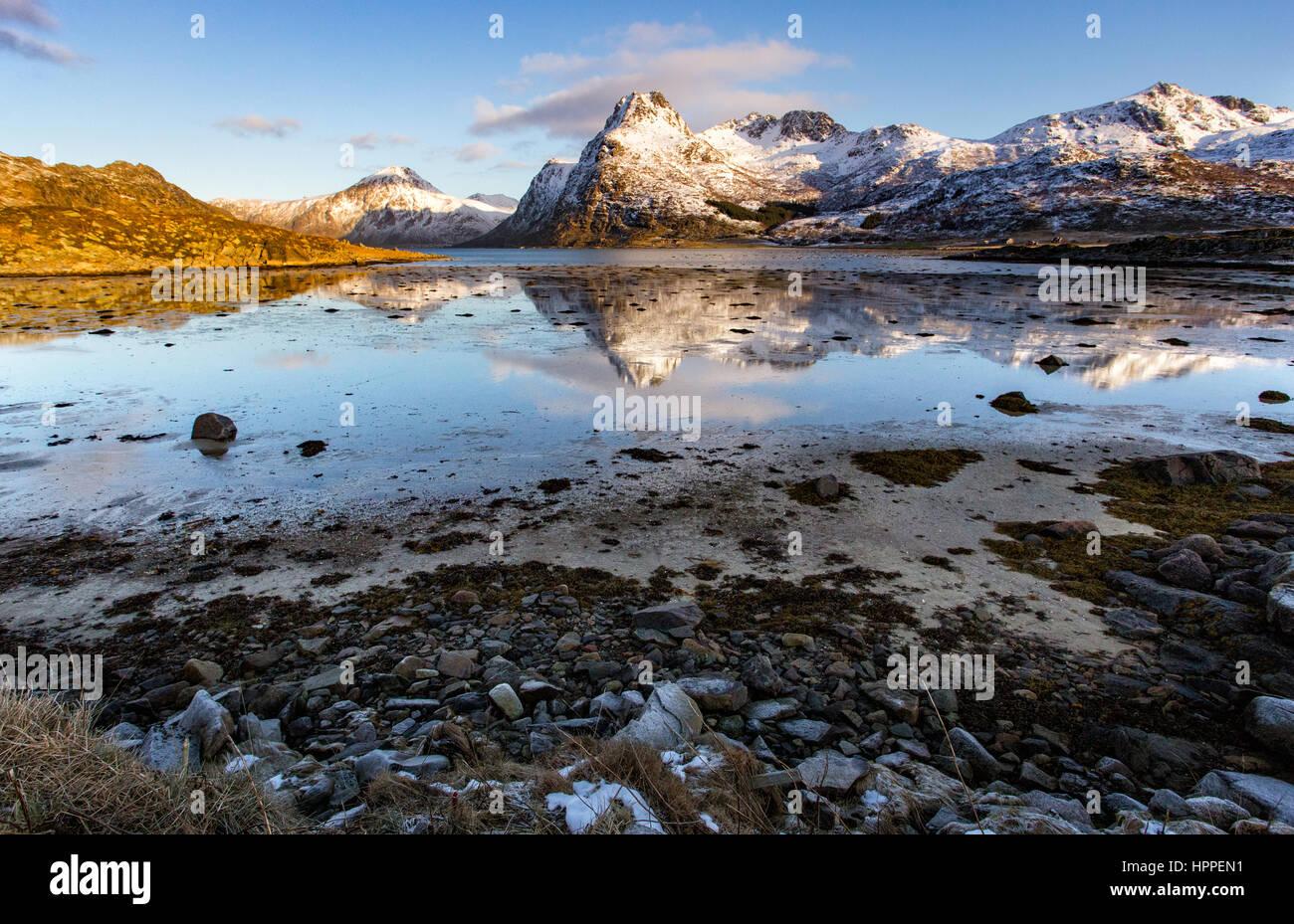 Flakstadoya mer, îles Lofoten, Norvège, Europe Photo Stock