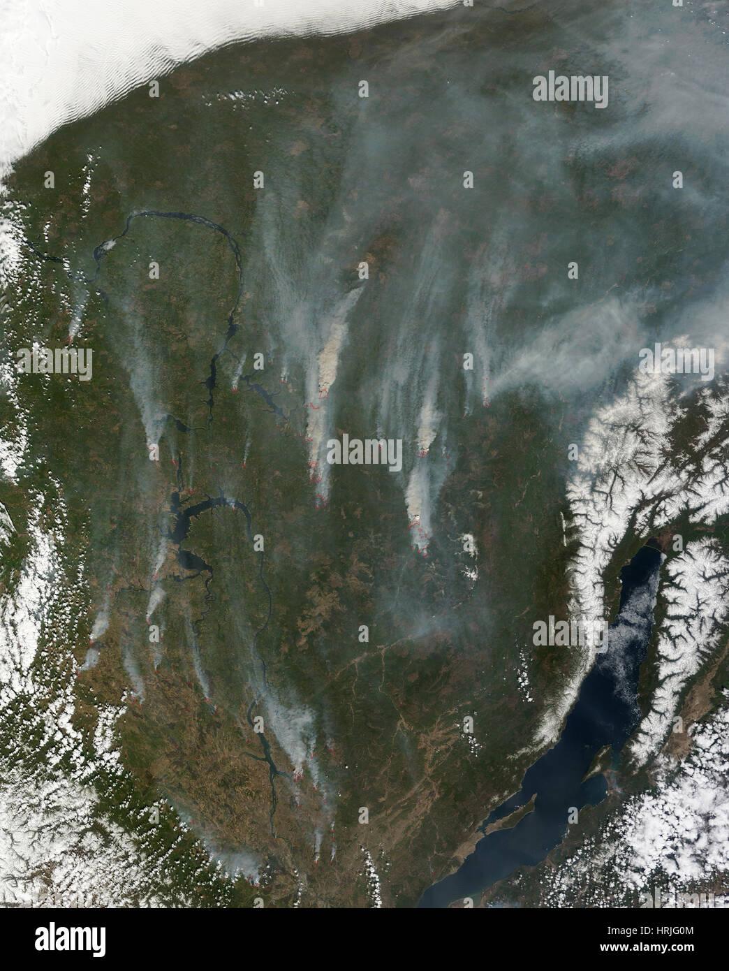 Les feux de forêts, d'Irkoutsk, Russie, 2014 Photo Stock