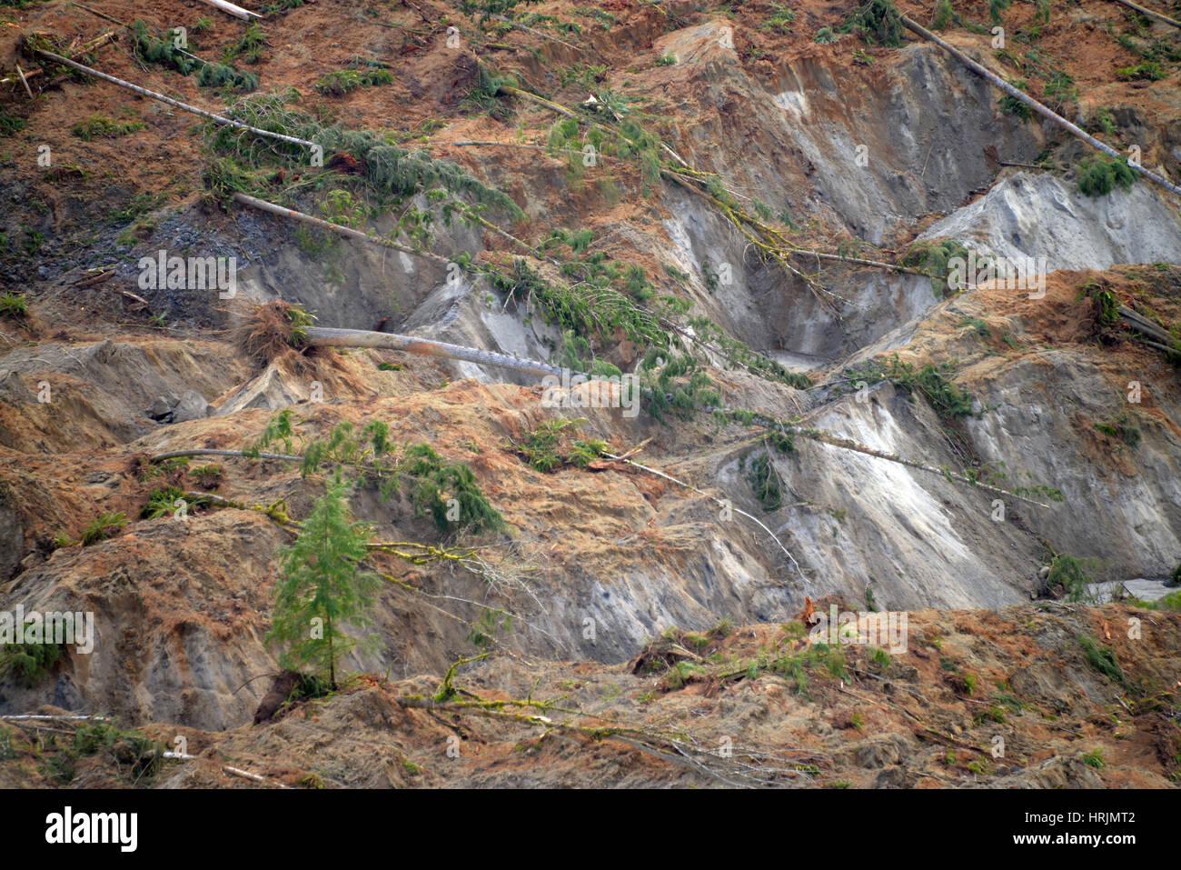 Glissement de Washington, 2014 Photo Stock