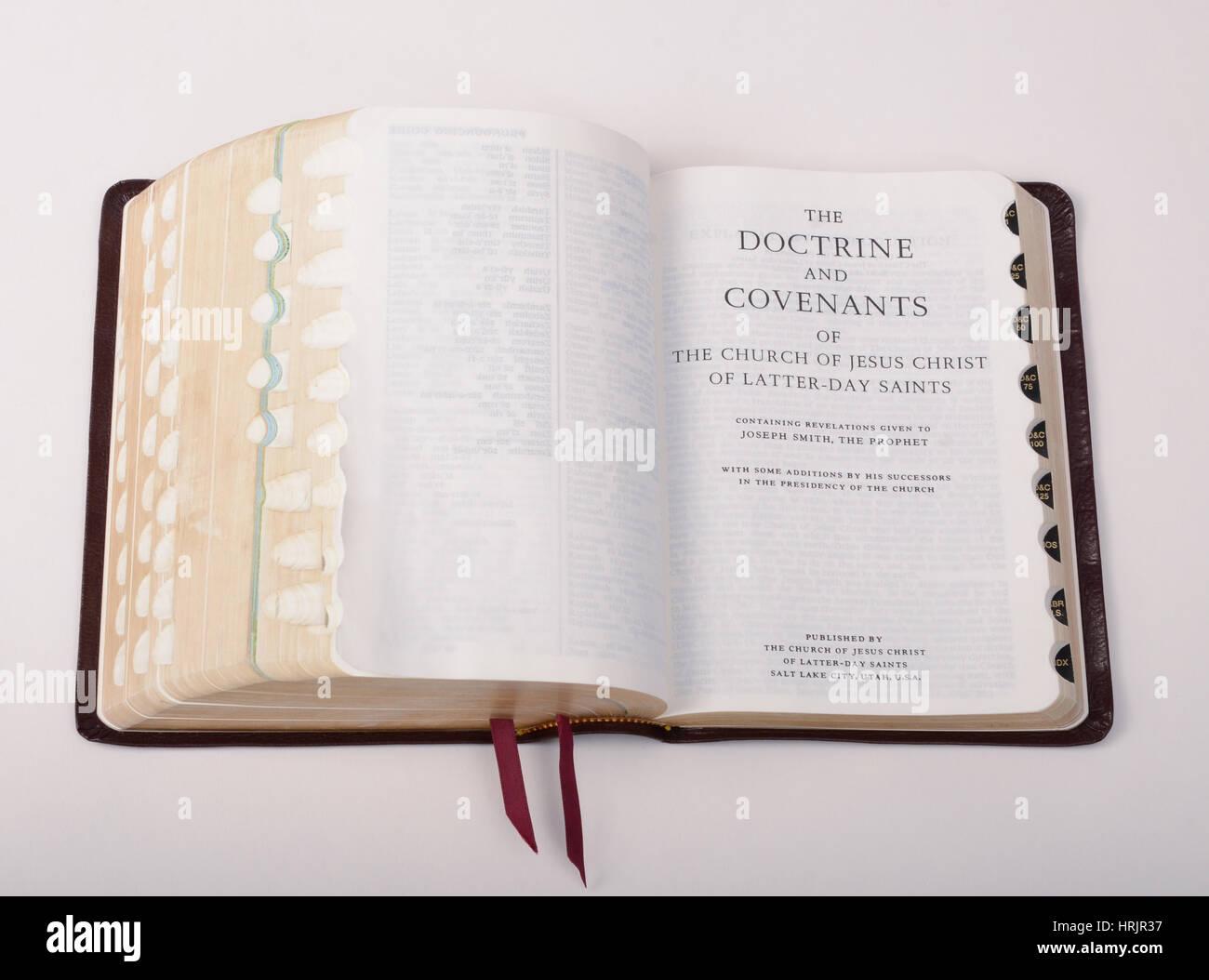 Livre de Mormon, Still Life Photo Stock