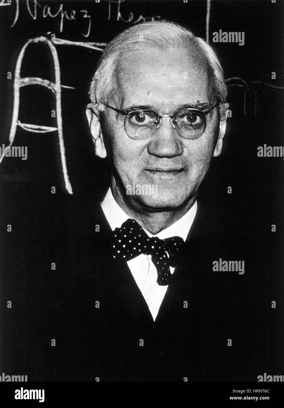 Alexander Fleming, biologiste écossais Photo Stock