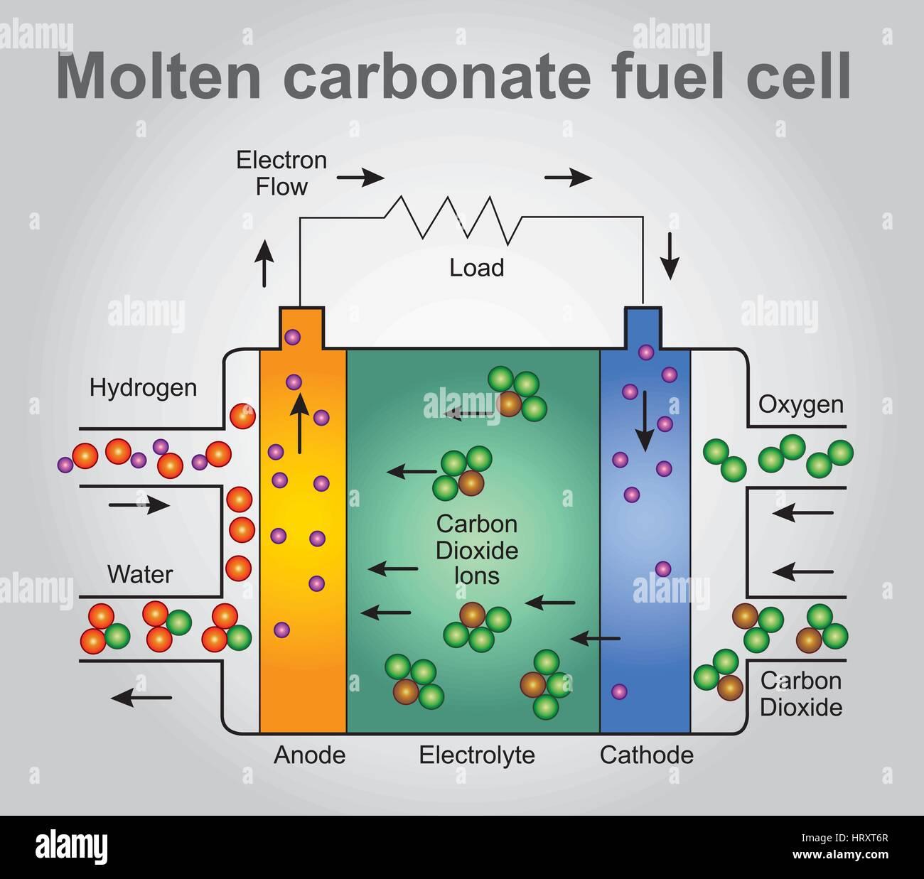 Piles à combustible à carbonate fondu sont actuellement en cours de développement pour le gaz naturel, Photo Stock
