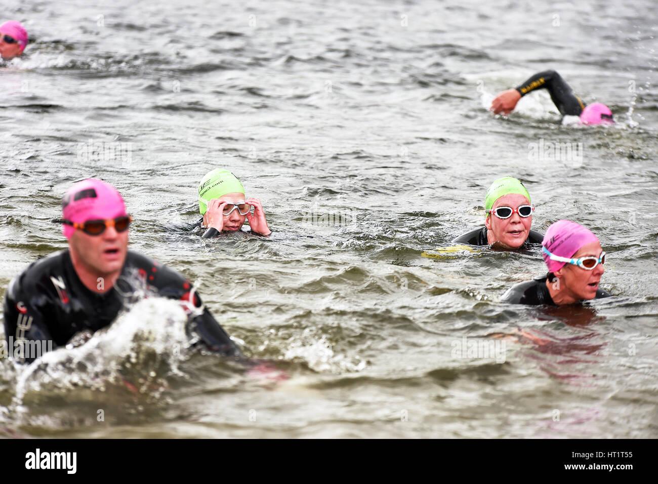 Une épreuve de natation en eau libre, le lac Ullswater Cumbria UK Photo Stock