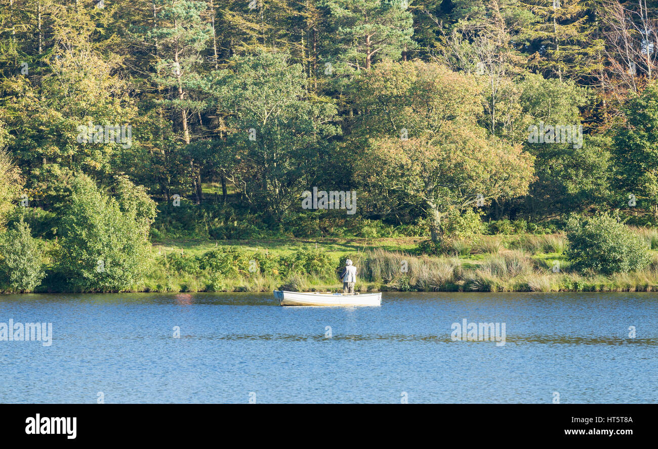 Man fly fishing de voile sur Lockwood Beck, North York Moors National Park, North Yorkshire, Angleterre, Royaume Photo Stock