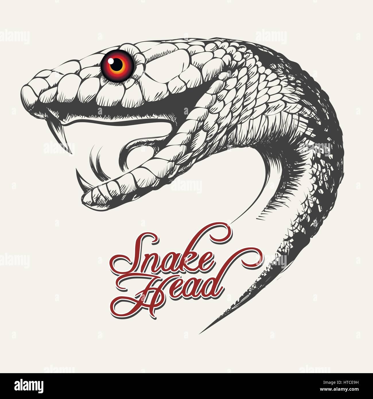 En tête de serpent Handdrawn style tatouage. Vector illustration. Illustration de Vecteur