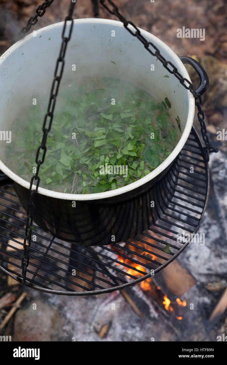 Van Kräutersuppe Wildgemüse Lagerfeuer Suppe, aus, Kräuter, Feuer, piscine. la soupe, Feuerstelle, Photo Stock