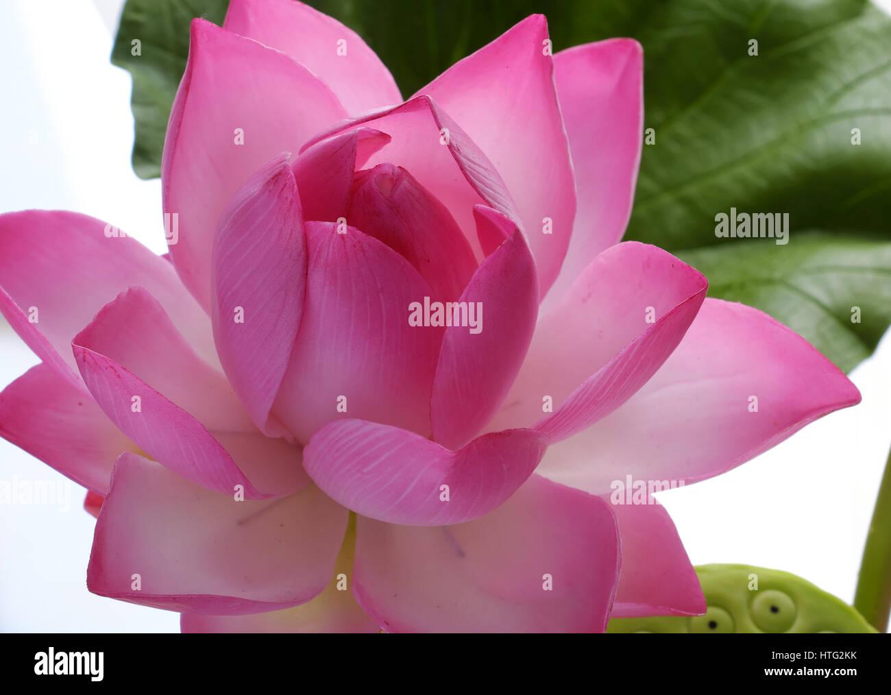 L Argile A La Main Fleurs Artificielles Fleur De Lotus Avec Vert