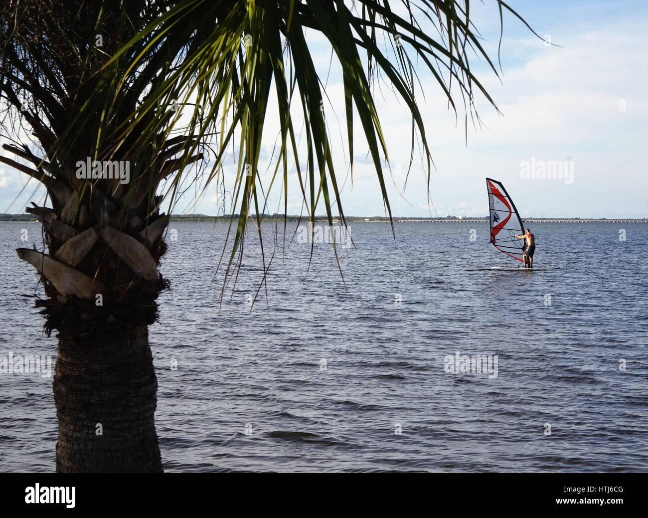 La planche à voile dans la rivière indienne, en Floride Photo Stock