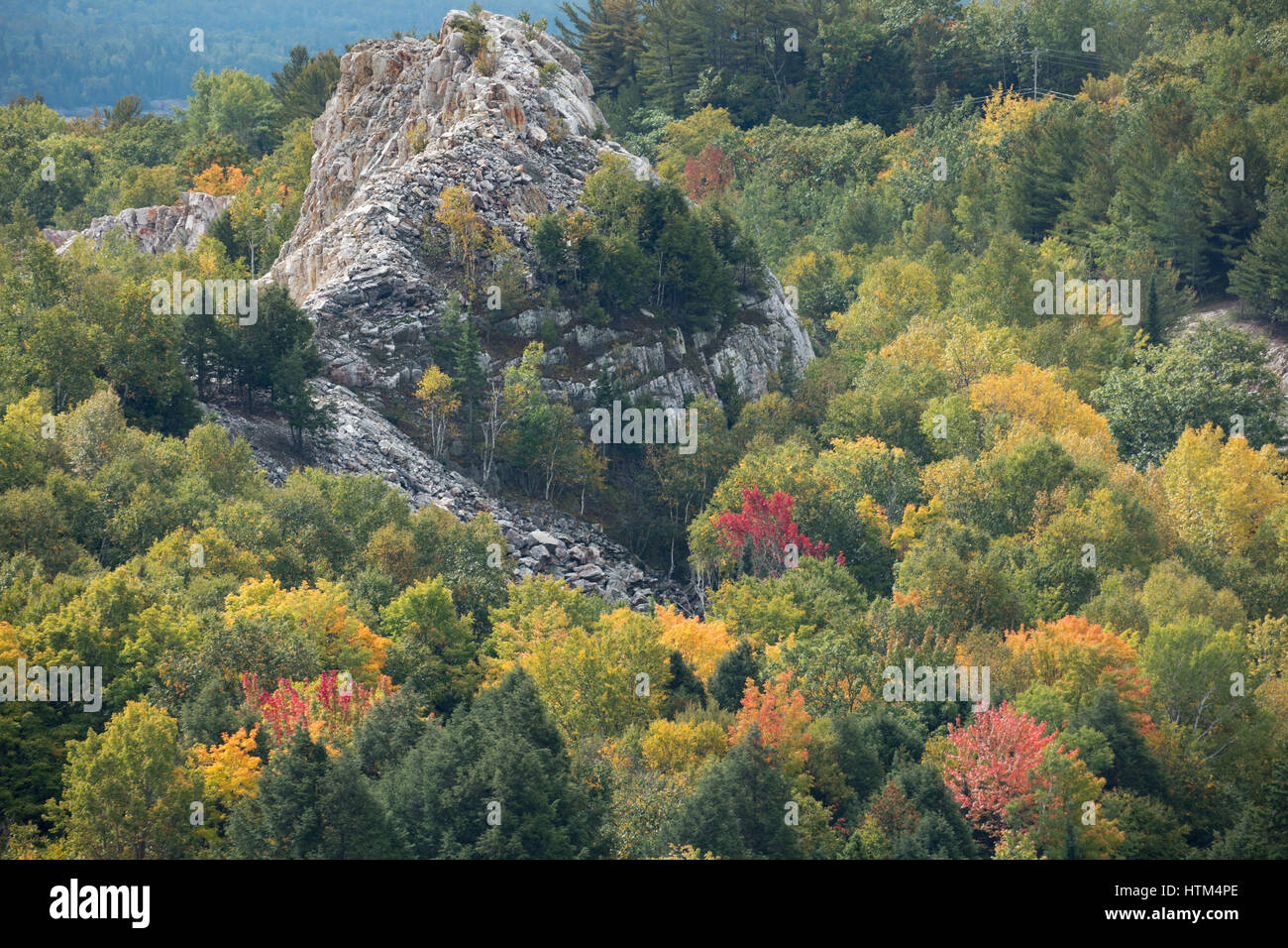Couleurs d'Automne, lac Charlton frangeant nr Whitefish Falls, District de Sudbury, Ontario, Canada Banque D'Images