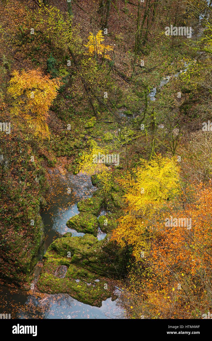 Couleurs d'automne sous le Pont du Diable, Le Canyon du Petit Lison, Franche-Comté, France Banque D'Images