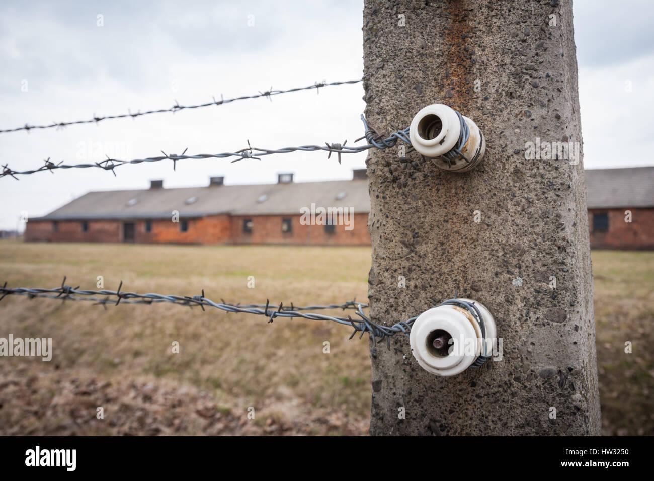 Vue rapprochée de la clôture électrique isolateurs d