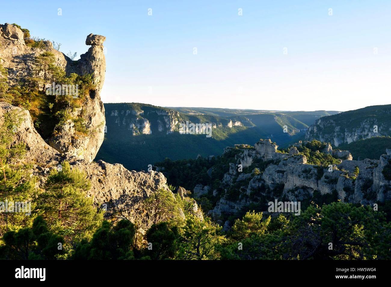 La France, l'Aveyron, les Causses et les Cévennes, paysage