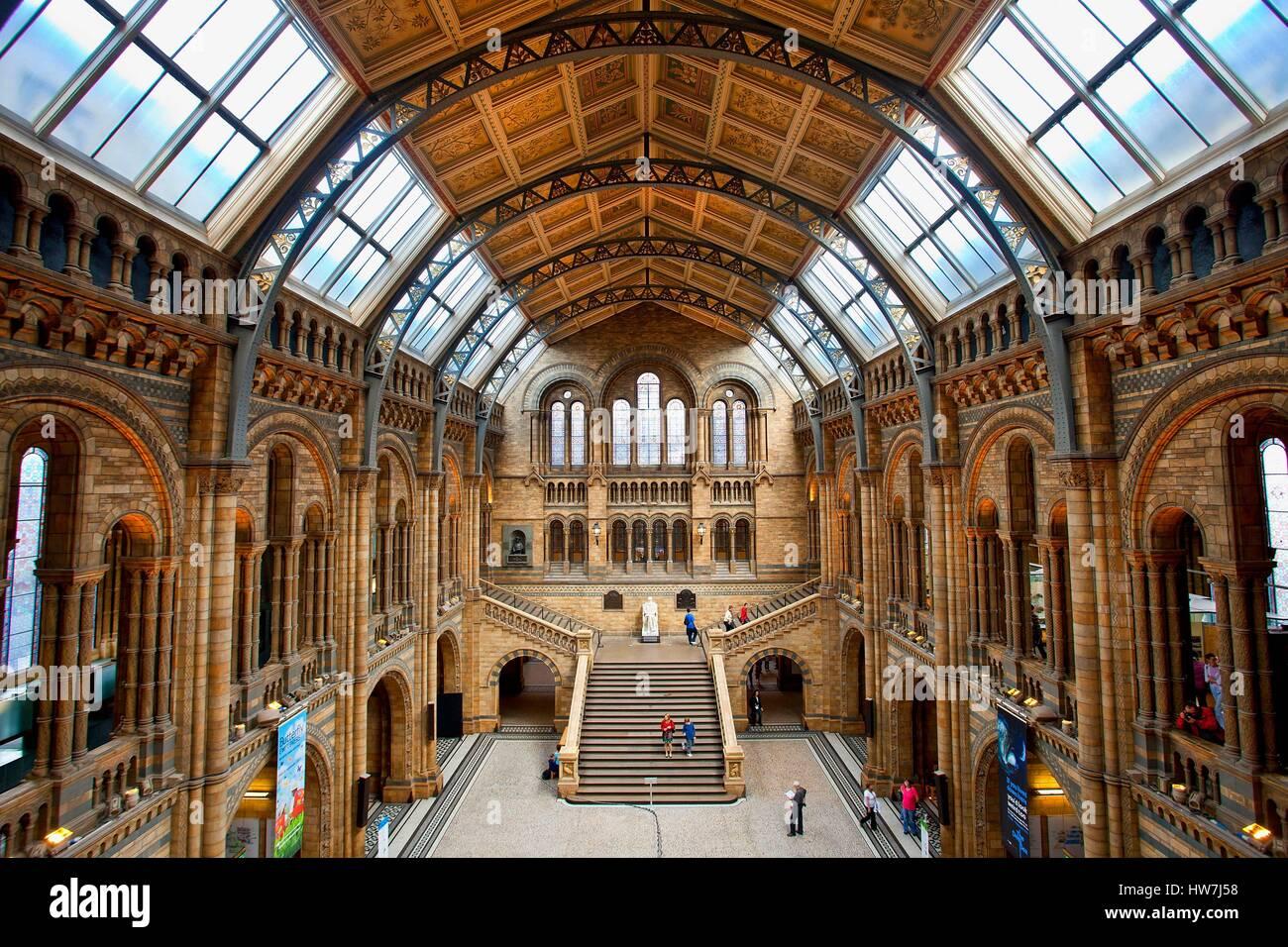 Royaume-uni, Londres, salle centrale du Musée d'Histoire Naturelle Banque D'Images