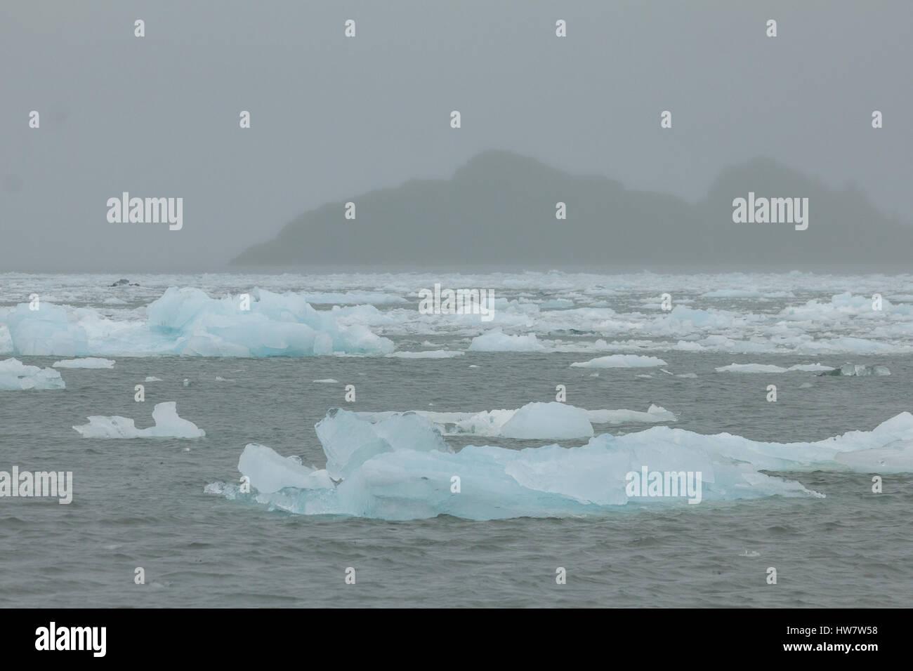 Ice bergs de Aialik et Glacier de l'île de Slate dans le brouillard, Kenai Fjords National Park, Alaska. Photo Stock