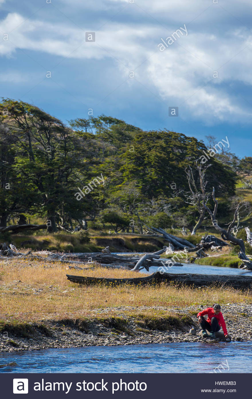 L'équipement de camping femme lave dans la rivière, Tierra del Fuego, Argentina Photo Stock