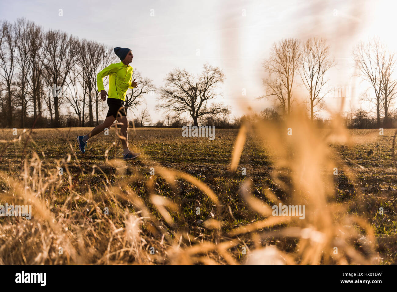 Man running in rural landscape Photo Stock