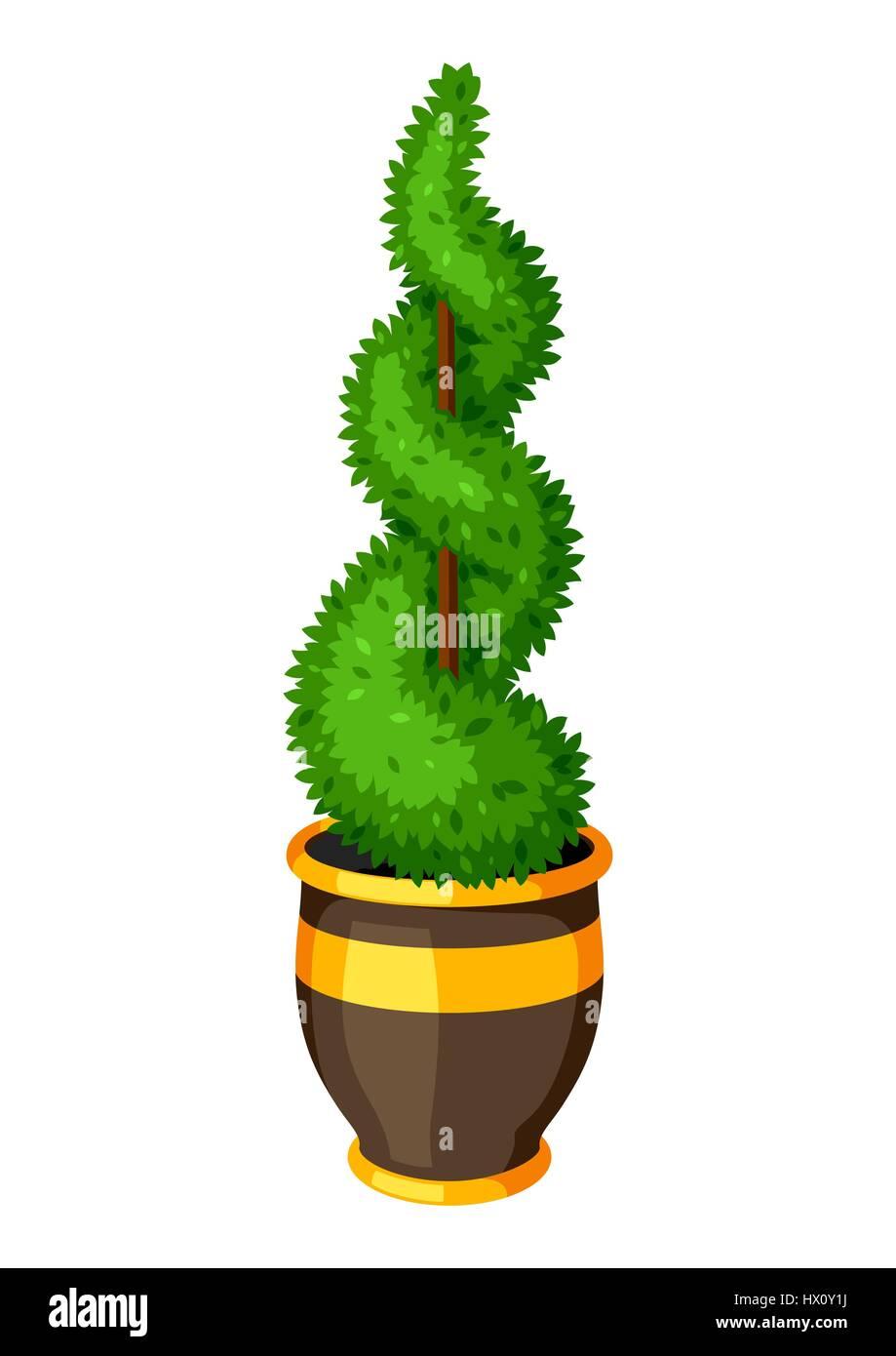 plante de jardin topiaire de buis. arbre décoratif en pot vecteurs