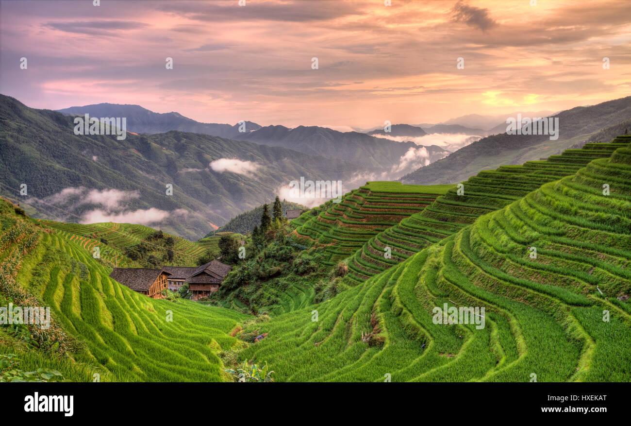 Coucher de pingan longji terrasses de riz Photo Stock