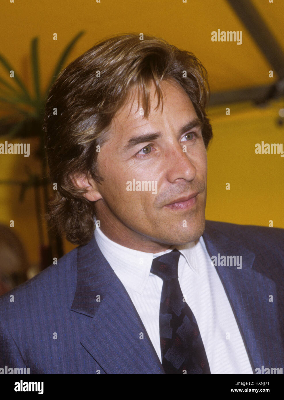 don johnson acteur am ricain mieux connu pour son r le de sonny crocket dans miami vice banque. Black Bedroom Furniture Sets. Home Design Ideas