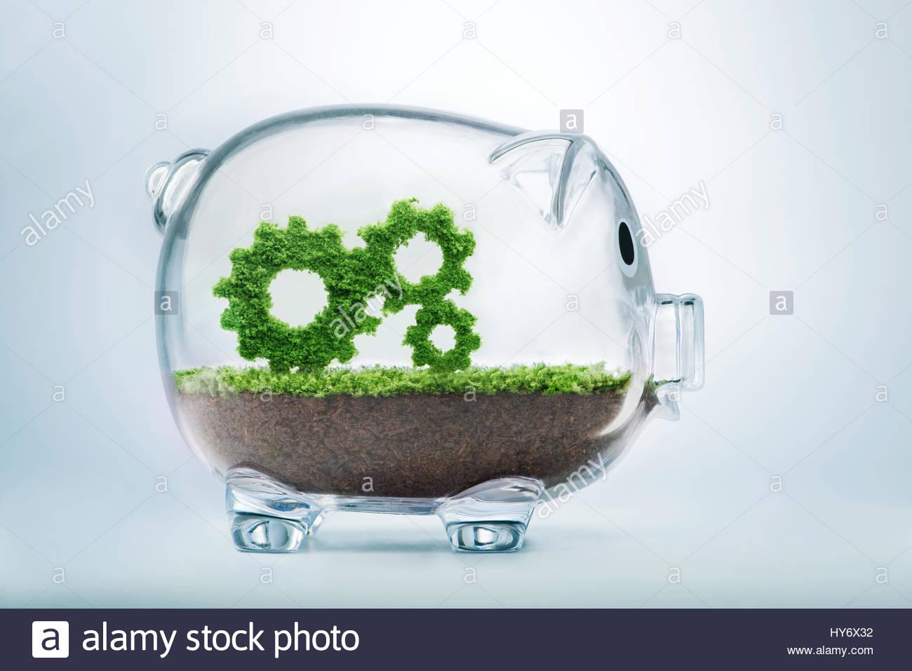 La croissance de l'entreprise concept avec l'herbe pousse dans la forme d'engrenages dans tirelire transparente Photo Stock