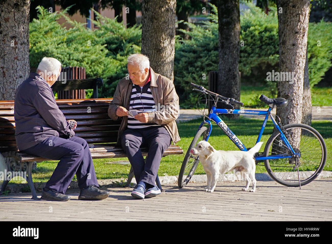 Personnes âgées hommes jouant aux cartes dans le parc avec l'observation d'chien à Cetinje, Photo Stock