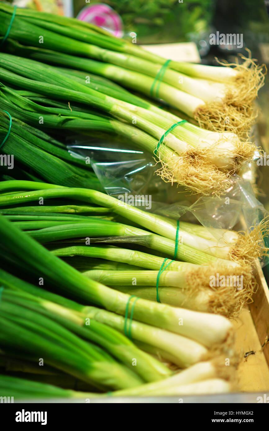 Bouquets de printemps frais oignons vert de vert sur le marché des fermiers de détail Affichage, Close Photo Stock