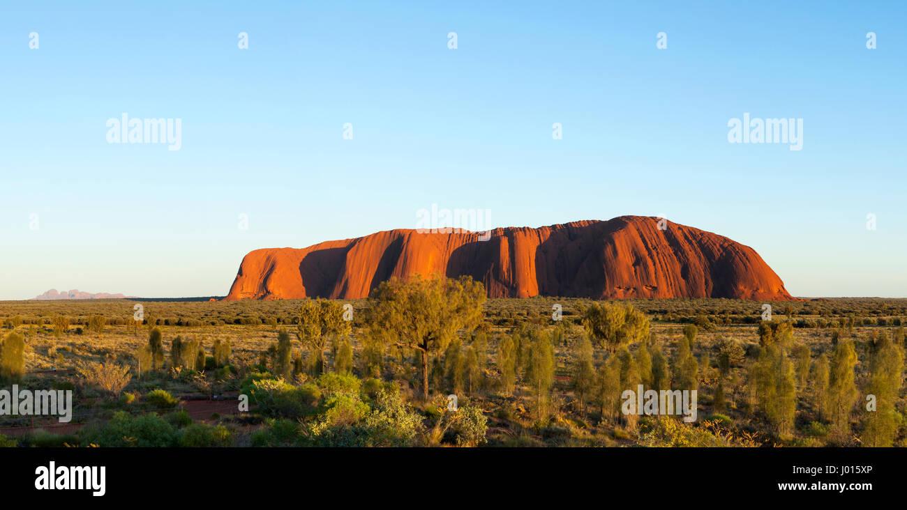 Lever du soleil sur Uluru, le Parc National d'Uluru-Kata Tjuta, Territoire du Nord, Australie Photo Stock