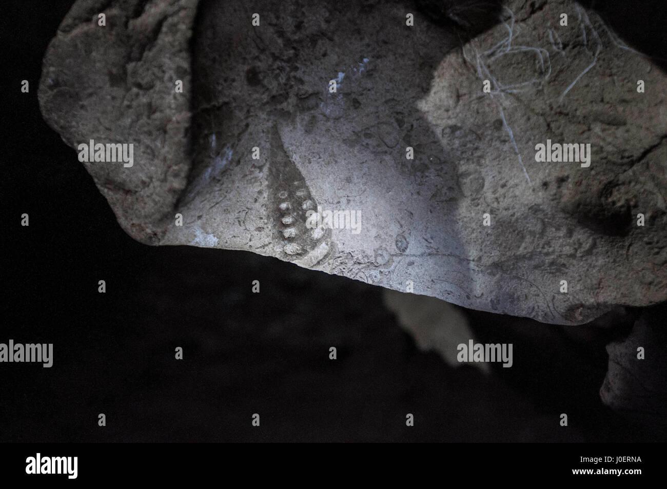 Fossiles sur les murs, mawsmai, grottes, Meghalaya, en Inde, en Asie Photo Stock