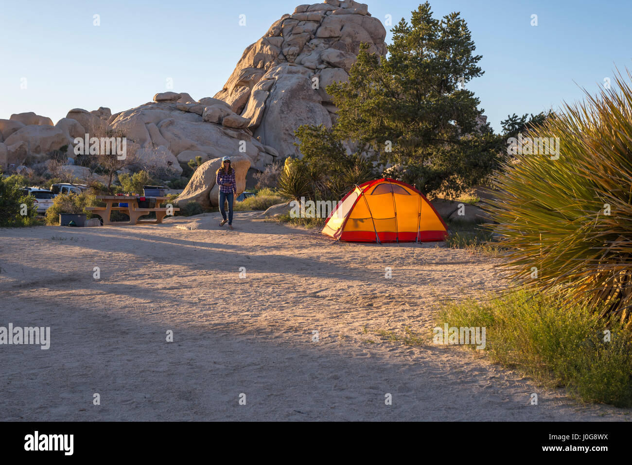 Tente de camping au camping. Joshua Tree National Park, Californie, USA. Photo Stock