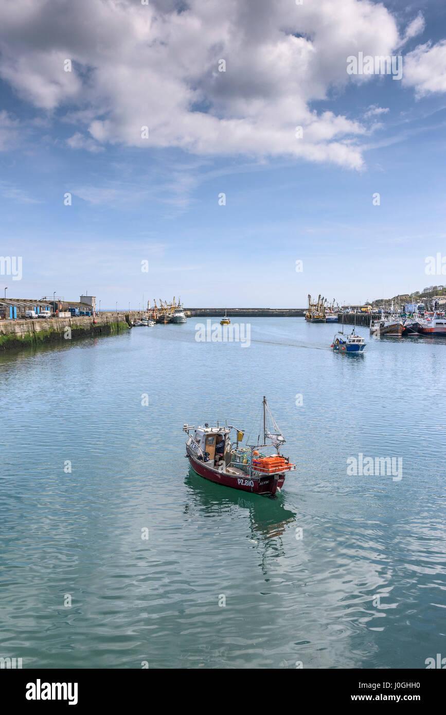 Port de pêche; Newlyn, PZ810 Alvic;; bateau de pêche bateau de pêche; quitter; Photo Stock
