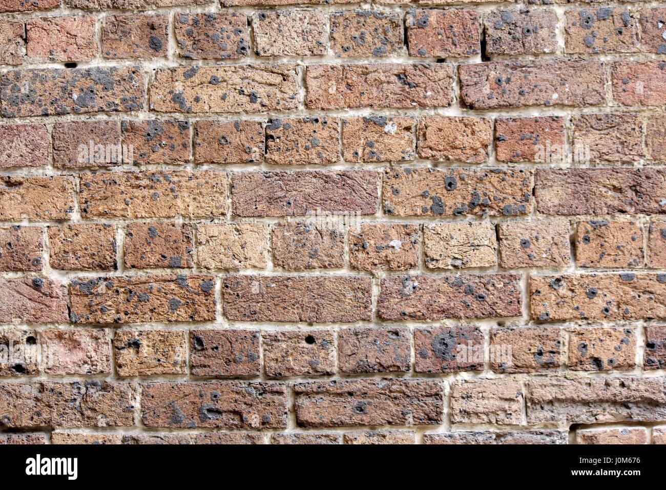 Grand mur de brique vintage pour les fonds et textures Photo Stock