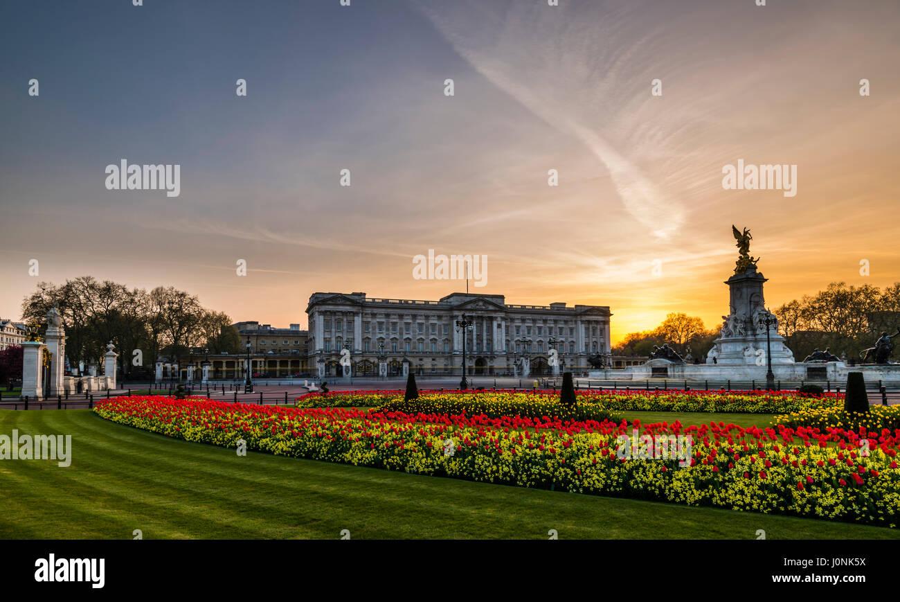 Les lumières à la tombée de ciel jaune et Buckingham Palace, London, UK Photo Stock